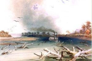 Missouri River Snags - Karl Bodmer